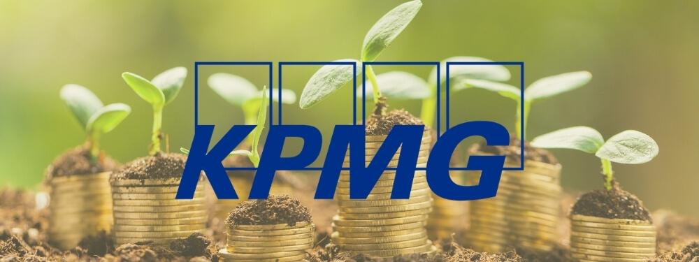 Централизация казначейской функции: возможные подходы