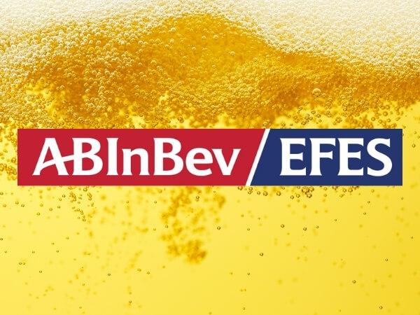 Четыре элемента ЭДО в AB InBev Efes